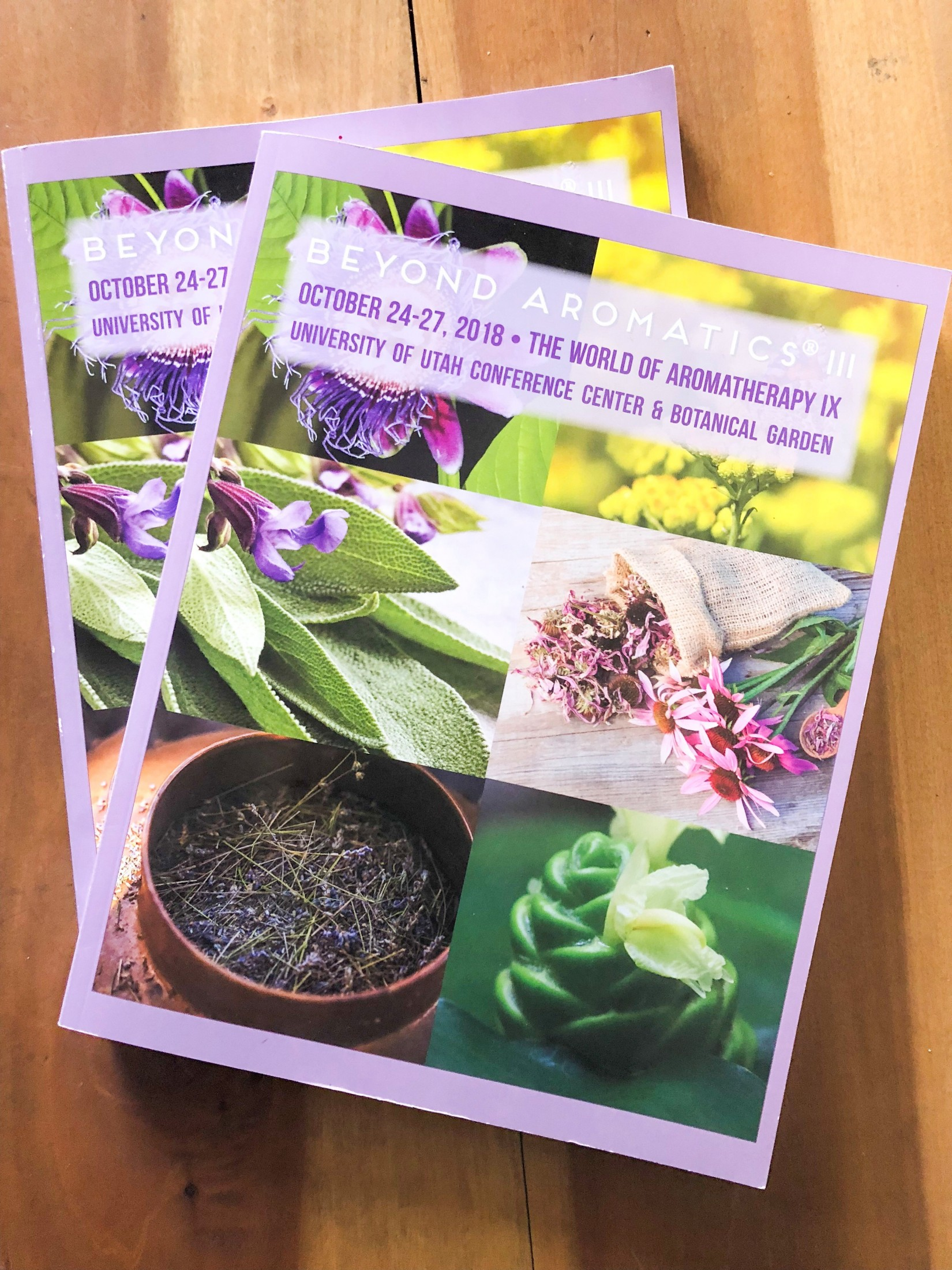 2018 Beyond Aromatics Conference Proceedings Book