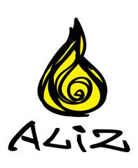 Aliz Academy & Consultants