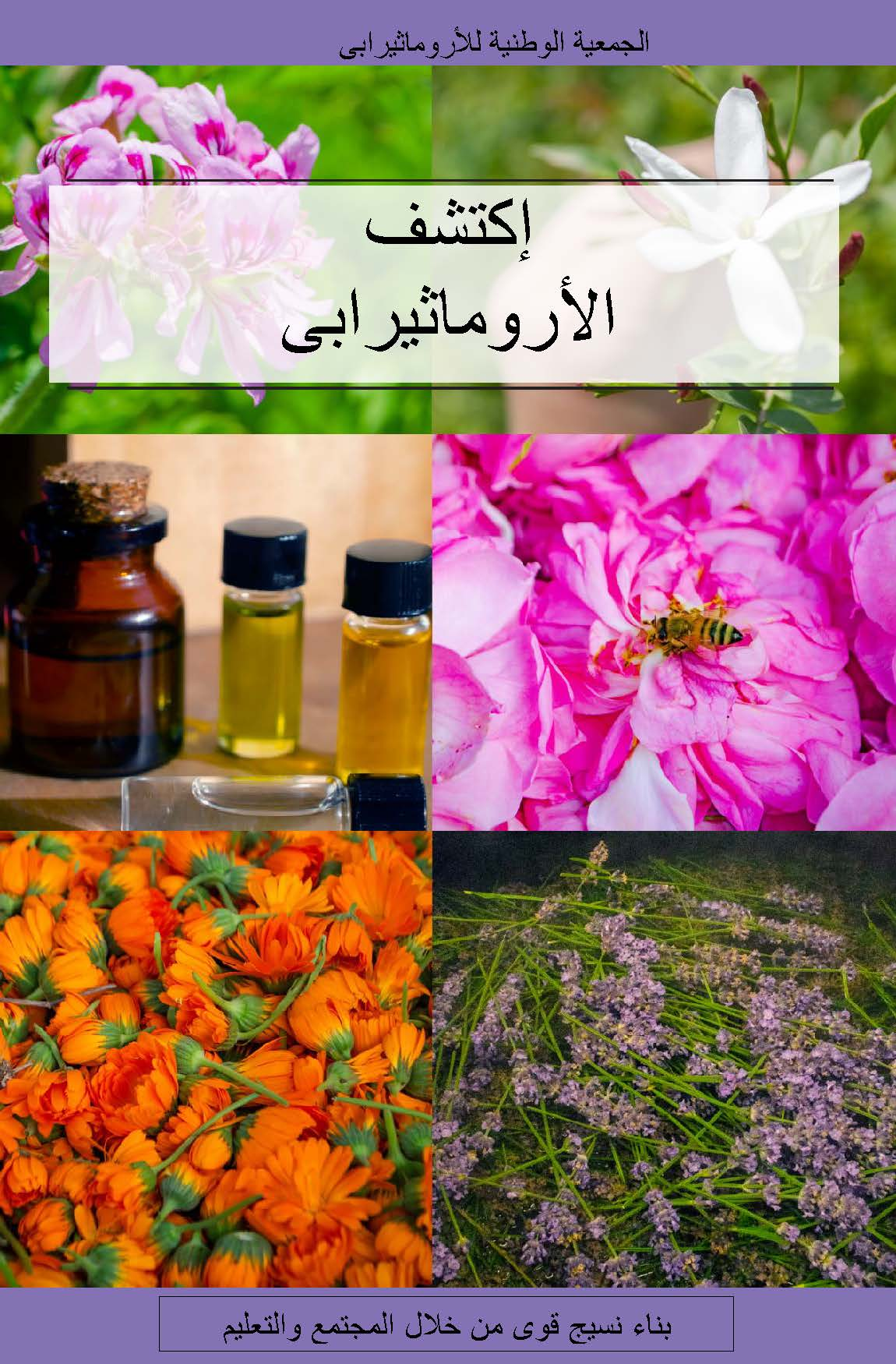 Explore Aromatherapy Booklet (Arabic) PDF DOWNLOAD ONLY