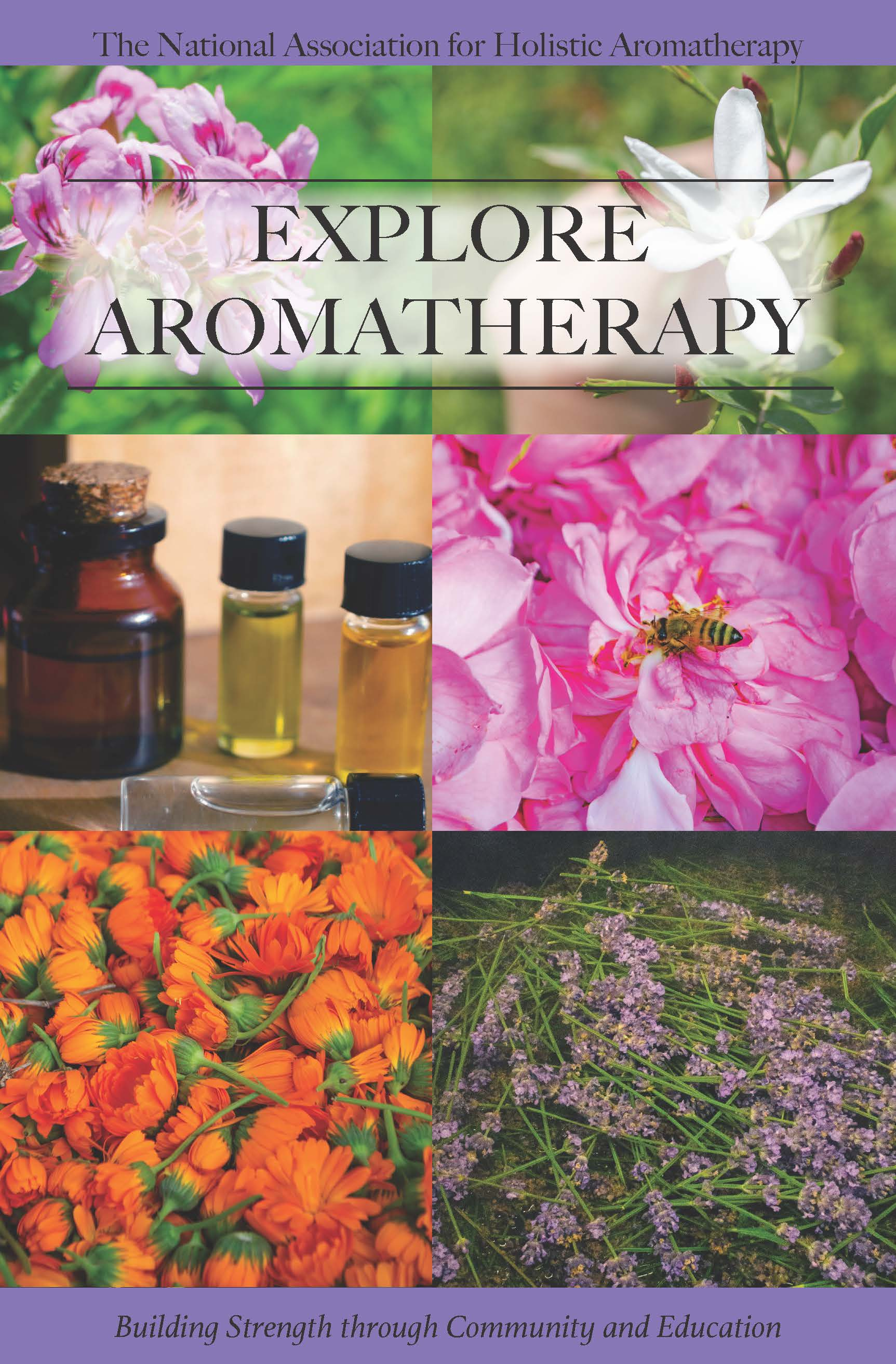 Explore Aromatherapy Booklet- PDF DOWNLOAD ONLY