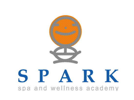 SPARK Academy and Consultants