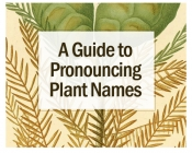 A Guide to Pronouncing Plant Names