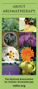 About Aromatherapy Brochure