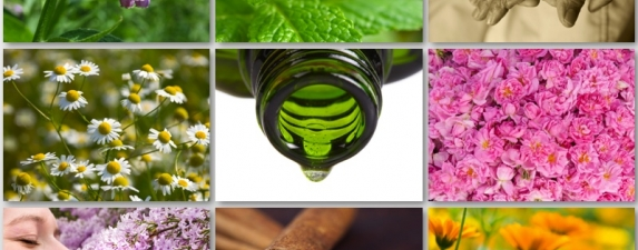 World of Aromatherapy VII 2014